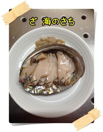 IMG_6486.jpg