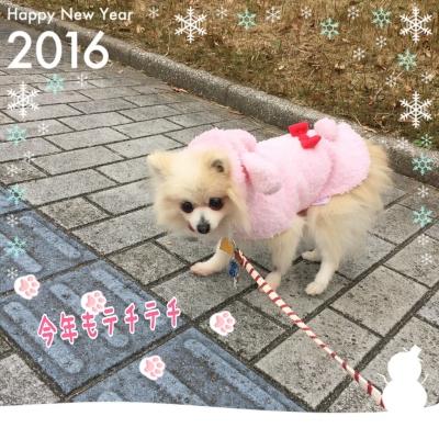 20160101155413733.jpeg