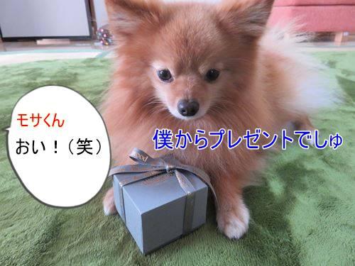s-IMG_4786.jpg