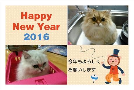 2016010100111.jpg