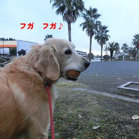 b_20151227023345e34.jpg
