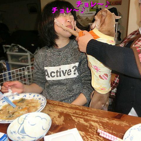 b_20160120012932358.jpg
