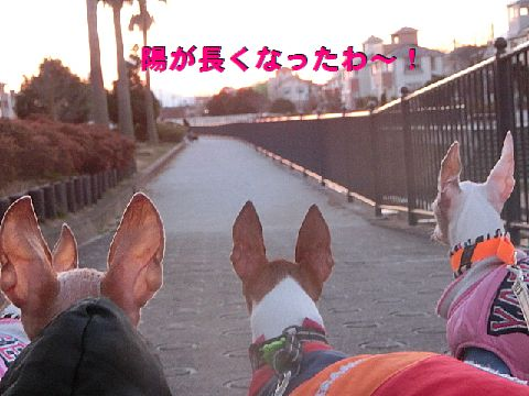 b_20160212014617687.jpg