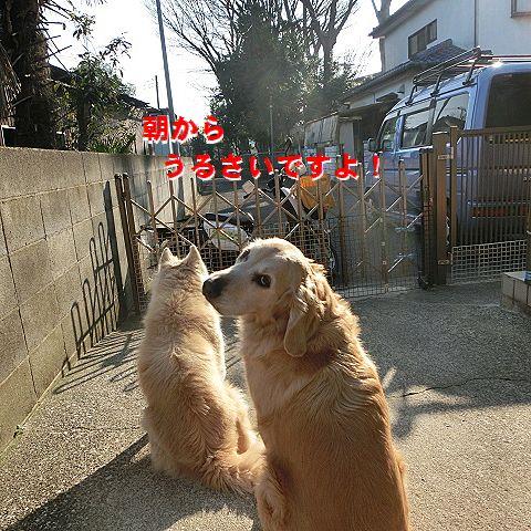 c_20160116022214a35.jpg