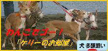 itabana3_20151225022303c3f.png