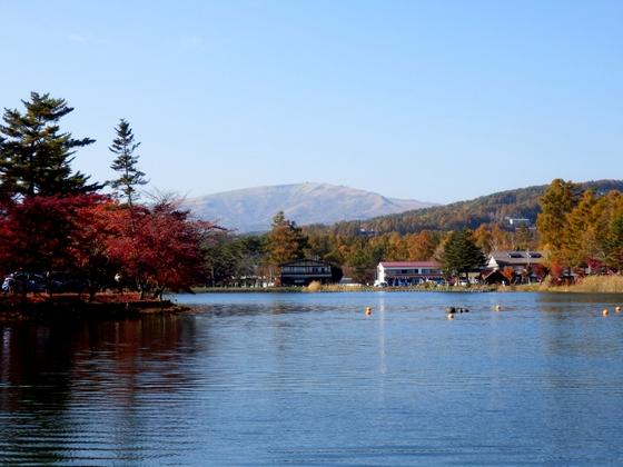 蓼科湖 (154)
