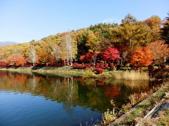 蓼科湖 (169)