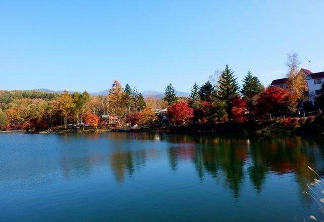 蓼科湖 (224)