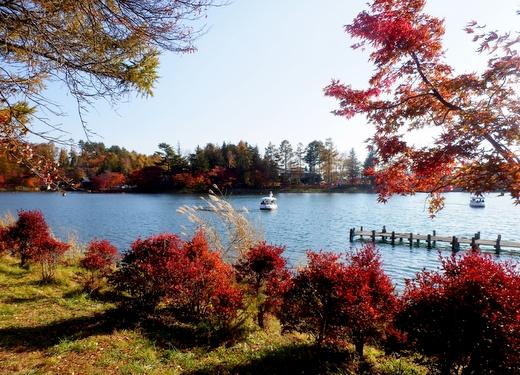 蓼科湖 (246)