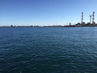 鹿島港 サヨリ釣り情報