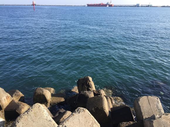 2016鹿島港初釣り