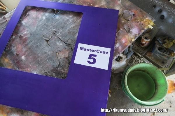 MasterCase5-44.jpg
