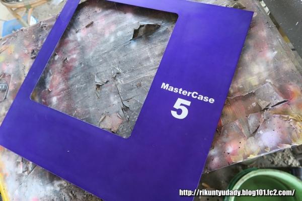 MasterCase5-46.jpg