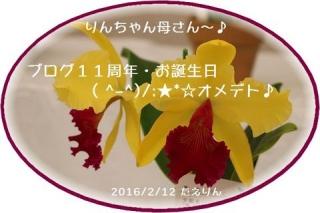 2016 BDたえりんちゃん
