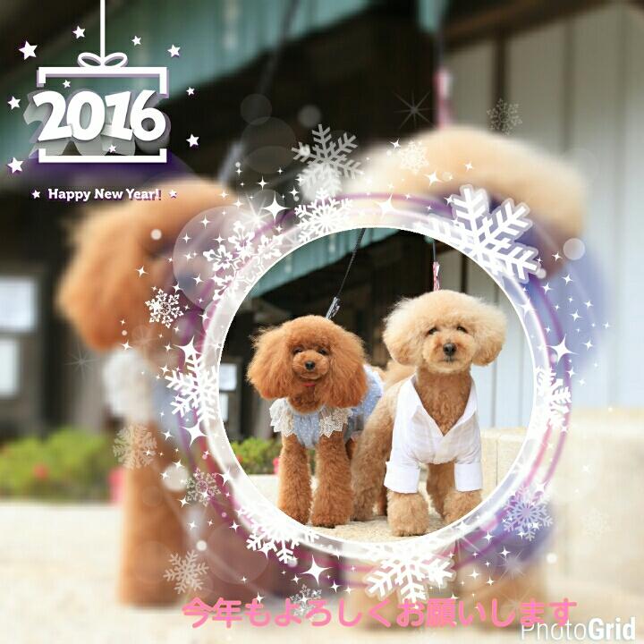 20160102011651fa3.jpg