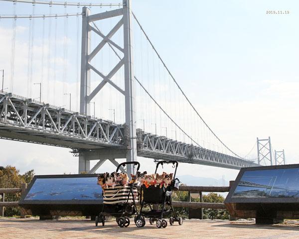 橋と記念撮影