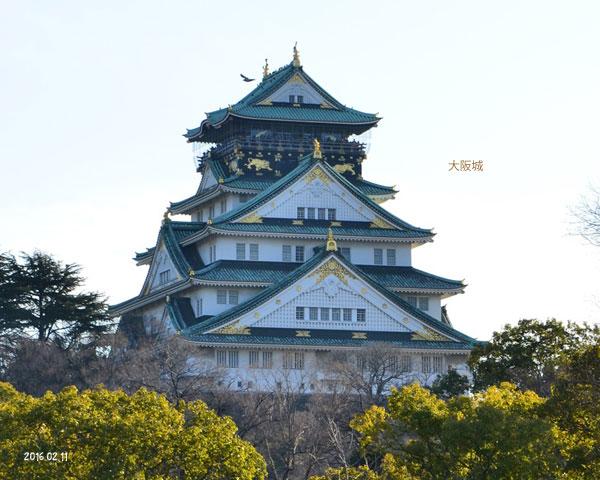 大阪城せっちゃん撮影