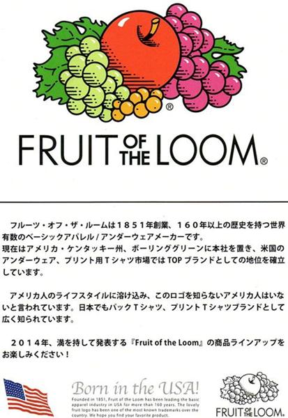 2016-02-22 USコットンモックネックポケット付き長袖Tシャツ FRUIT OF THE LOOM フルーツオブザルーム 10