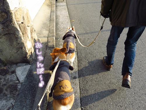 夕方のお散歩☆