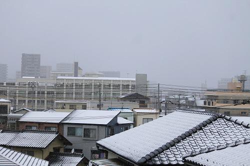 雪積もってた~