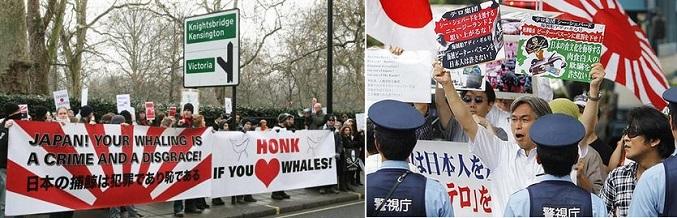捕鯨 反対2