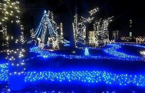 15christmas.jpg