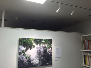 ライト工事3