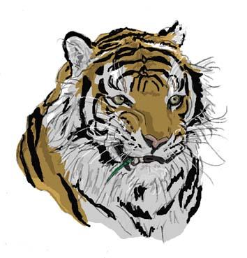 虎草食い顔