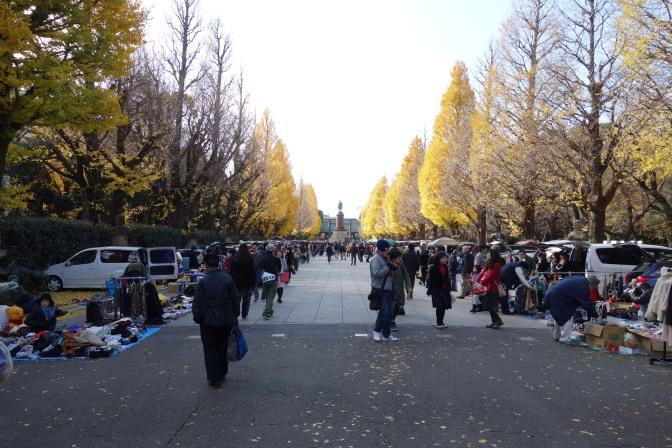 靖国神社の銀杏並木はではフリーマーケットが開催されていて雰囲気が台無し…銀杏も終わりかけ。