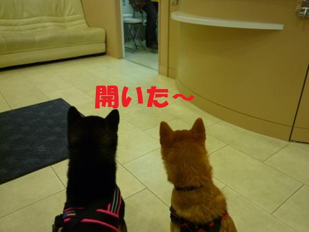 blog10133.jpg