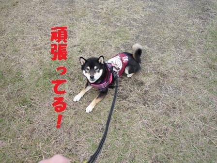 blog10158.jpg