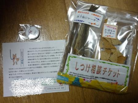 blog10215.jpg