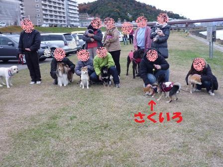 blog10261.jpg