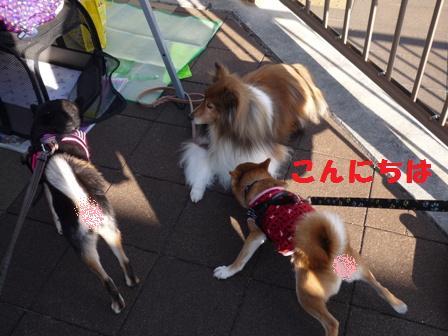 blog10268.jpg