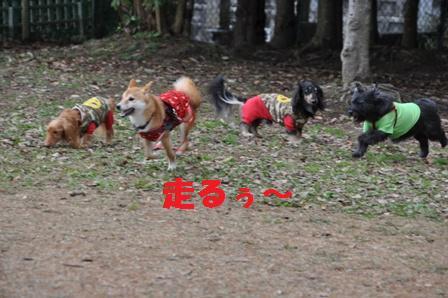 blog10319.jpg
