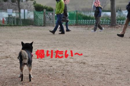 blog10320.jpg