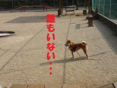 blog10365.jpg