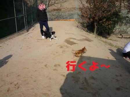 blog10370.jpg