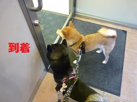 blog10467.jpg