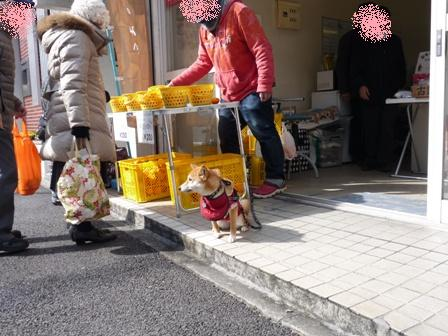 blog10506.jpg