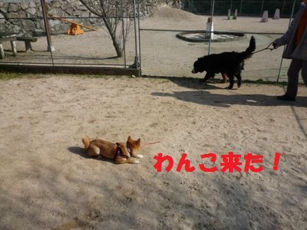 blog10524.jpg