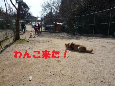 blog10526.jpg