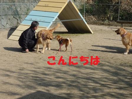 blog10527.jpg