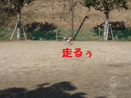 blog10557.jpg