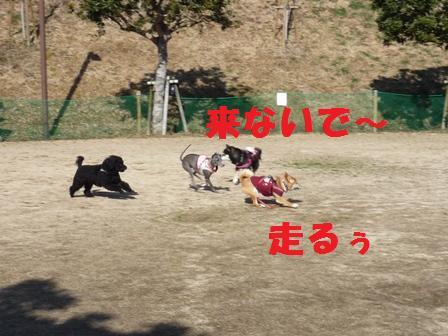 blog10561.jpg