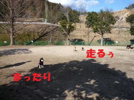 blog10563.jpg