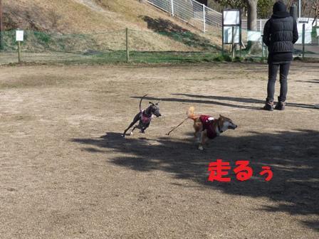 blog10564.jpg