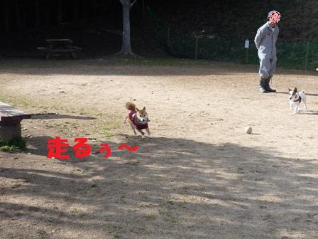 blog10568.jpg
