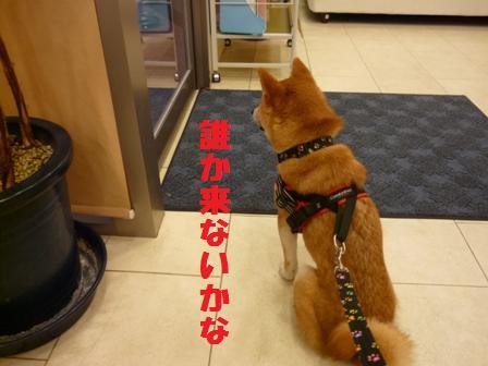 blog10599.jpg