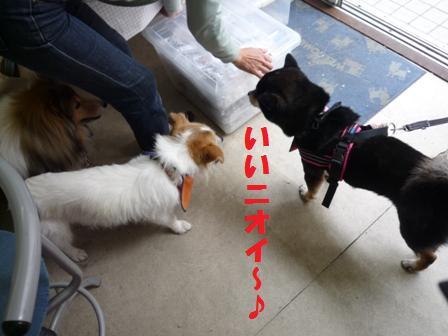 blog10606.jpg